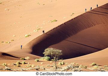 dunas, en, el, desierto de namib, parque de namib naukluft,...