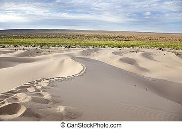 dunas, hongor