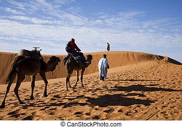 dunas, sáhara, marroquí