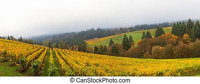 dundee, oregon, szőlőskert, közben, ősz fűszerezés, panoráma