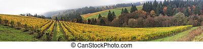 Dundee Oregon Vineyards Panorama