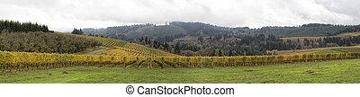 Dundee Oregon Vineyards Sweeping View Panorama