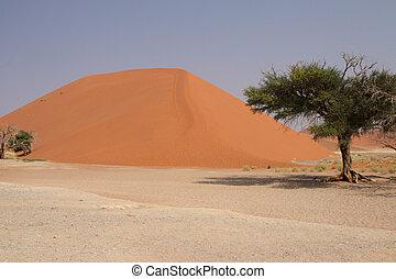 Dune 45 near Sossusvlei in the Namib Desert, Namibia