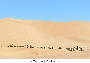 Dune 7 in the Namib desert