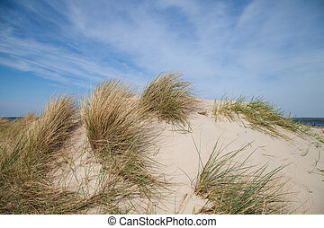 dune and blue sky at baltic sea