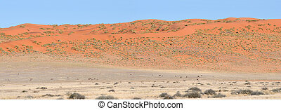 Dune and Oryx panorama of the Namibrand area in Namibia