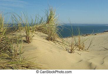 Dune du Pyla 02
