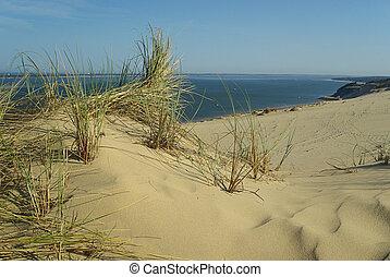 Dune du Pyla 03