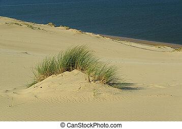 Dune du Pyla 04
