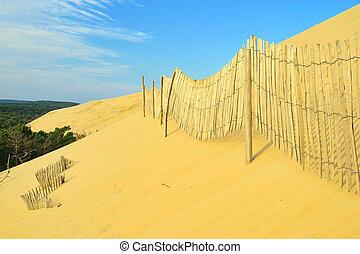 Dune du Pyla 11