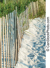 Dune Fence on Beach - water life and beach scenes at destin...