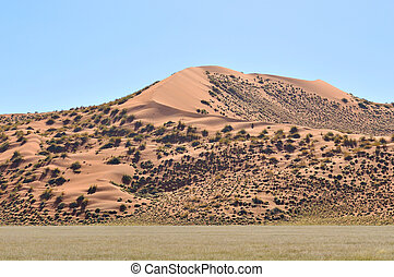 Dune landscape near Sesriem