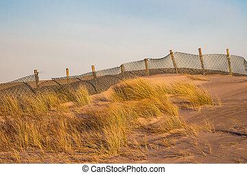 Dune on the beach in Warnemuende, Germany
