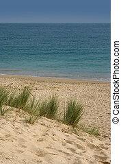 Dune on the beach