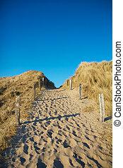 Dune Pathway 1