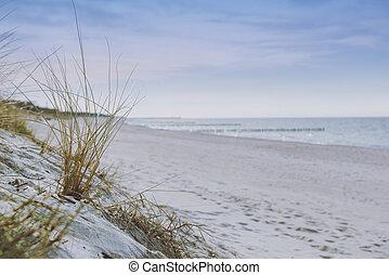 dune, soleggiato, spiaggia sabbia