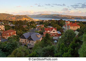 Dunedin during sunset