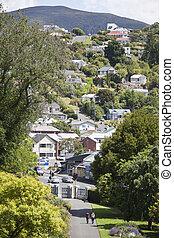 Dunedin Residential Hills
