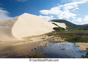 Dunes #4 - River next to the sand dunes