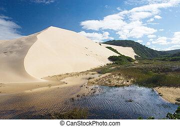 Dunes #4