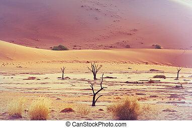 Namib - Dunes and dead acacia trees in the Namib desert, ...