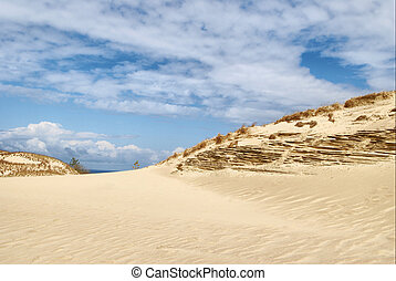 dunes at the Baltic sea - White clouds on blue sky over ...