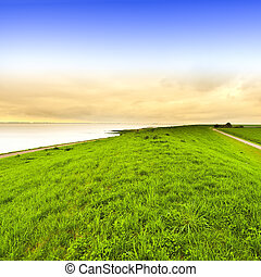 Dunes at the North Sea in Holland