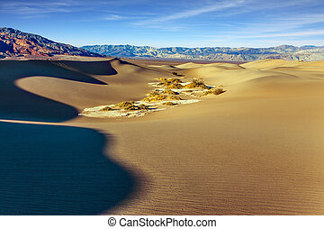 Dunes illuminated by sunset