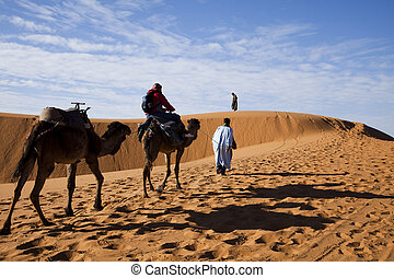 Dunes in Moroccan Sahara
