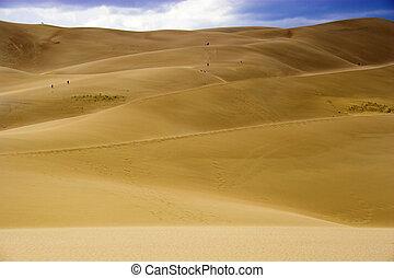 dunes, marche, sable, gens