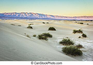 dunes, mort, sable, vallée