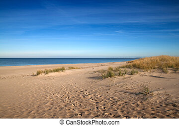 baltic sea beach - Dunes on a baltic sea beach, Poland.