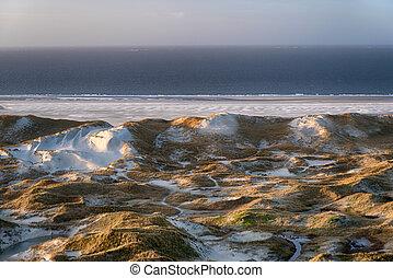 Dunes on the North Frisian Island Amrum in Germany