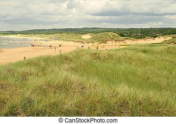 Dunes - Sand dunes on beach in Halmstad, Sweden .