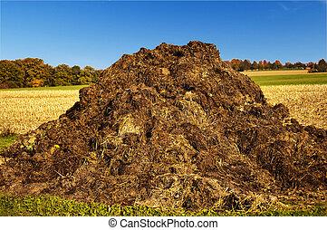 dung heap - dung hill with a blue sky