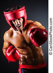 dunkel, boxer, handschuhe, zimmer, rotes