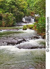 dunn's, fluß, jamaica., wasserfälle