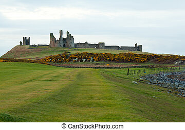 Dunstanburgh castle with green meadow grass fieldx Craster...