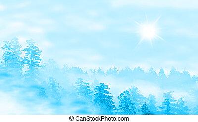 dunstig, sonnenaufgang, landschaftsbild, wald