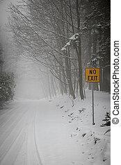 durante, camino, invierno, nevada