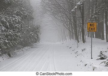 durante, camino, invierno, tormenta, nieve