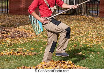 durante, trabalho, seu, tocando, jardineiro
