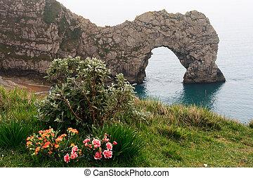 durdle, lulworth, drzwi, zatoczka, kwiaty, krajobraz