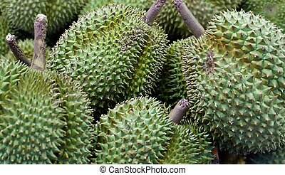 Durian fruits in close up