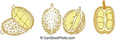 durian icon on white background