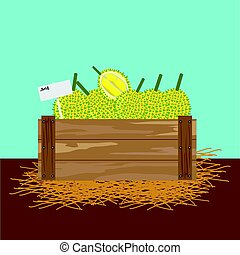 durian in a wooden crate