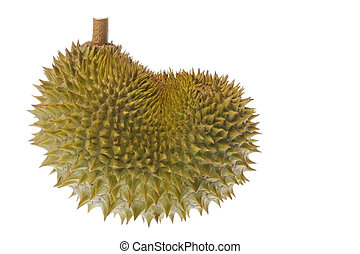 Durian Isolated - Isolated image of a Durian, the King of ...