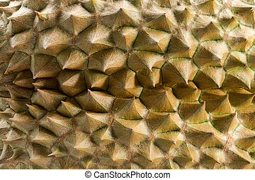 Durian peel the king of fruits.