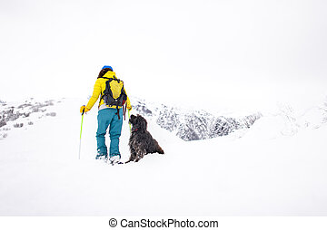 During a snowshoe hike a dog looks at his mistress
