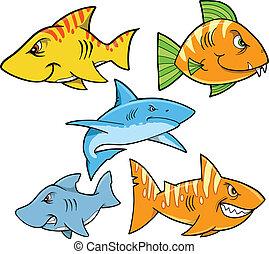 duro, tiburón, y, pez, vector, conjunto